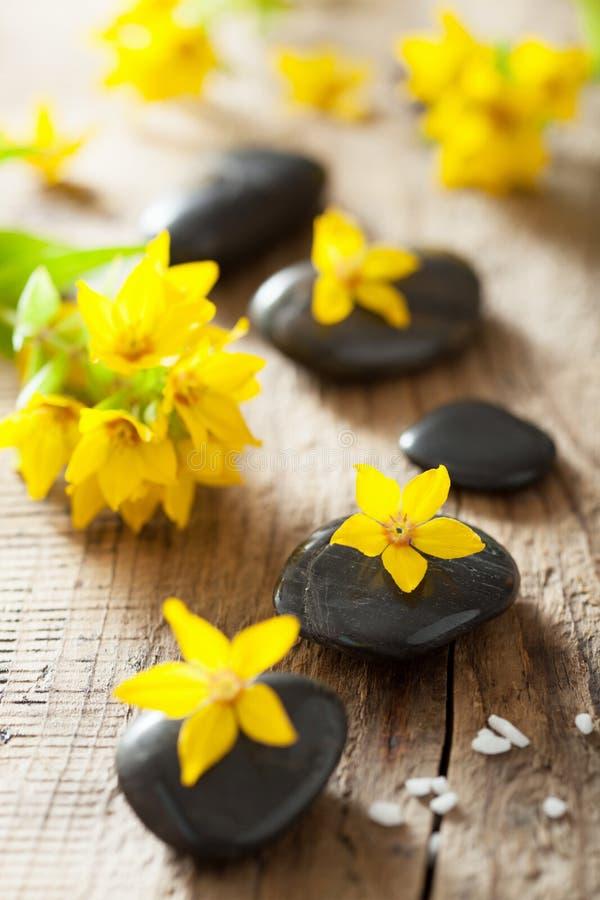 温泉石头和黄色花温泉的 免版税库存图片