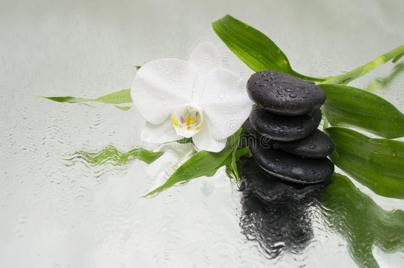 温泉背景-兰花黑石头和竹子在水 免版税库存图片