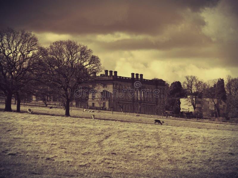 温特沃思城堡 免版税库存图片