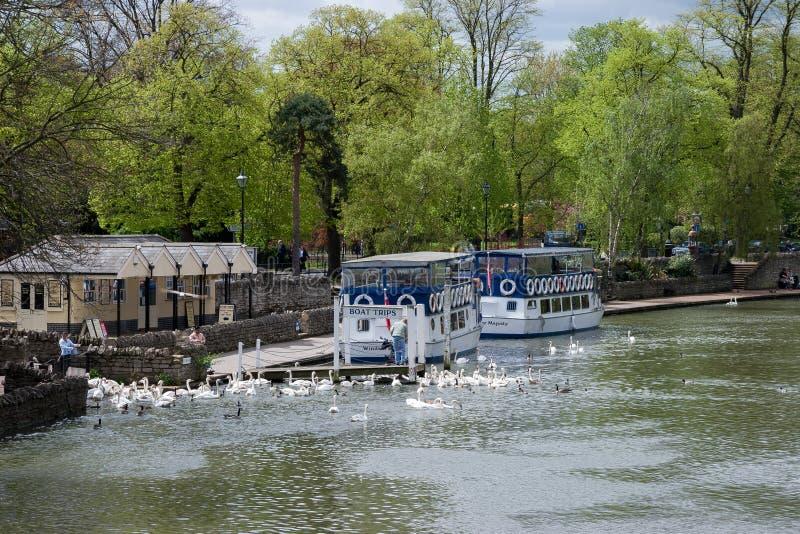 温莎, BERKSHIRE/UK - 4月27日:在河停泊的游船 免版税图库摄影