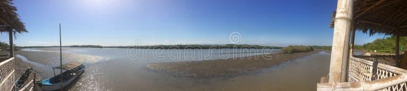 港口海滩的全景与美洲红树树的在海和海岛附近 免版税库存图片