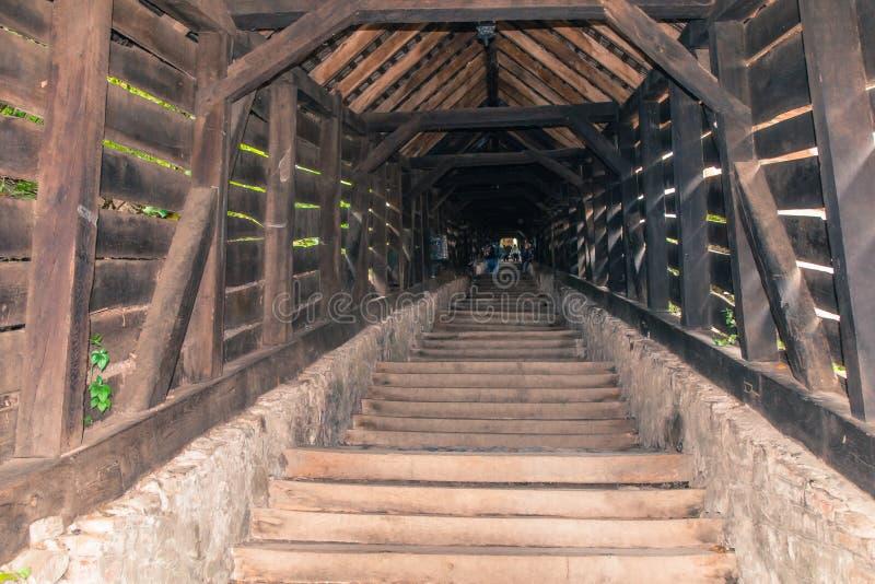 游人在老城市城堡的梯子街道上走  Sighisoara市在罗马尼亚 免版税库存照片