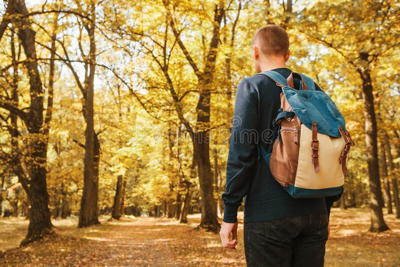 游人或旅客有一个背包的在秋天森林里 免版税图库摄影