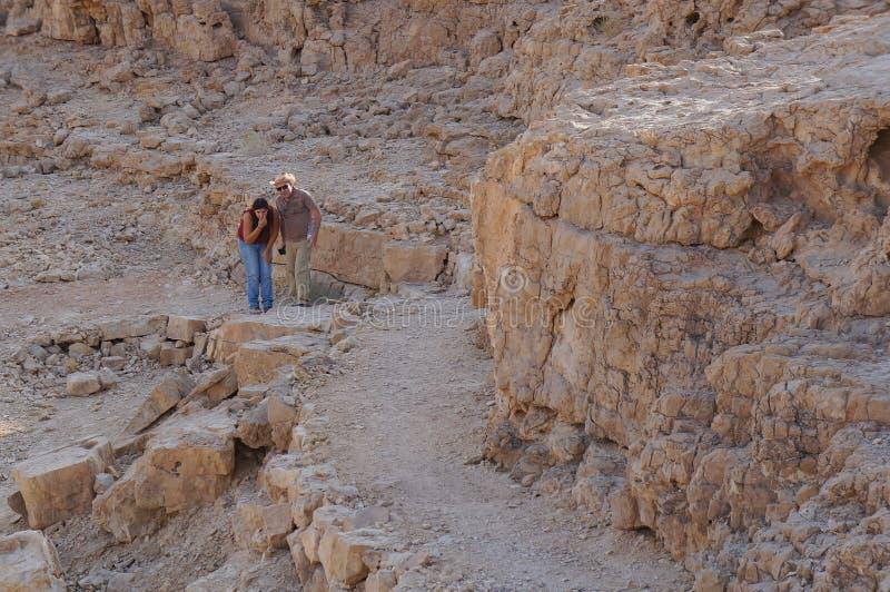 游人探索沙漠野生生物  库存照片