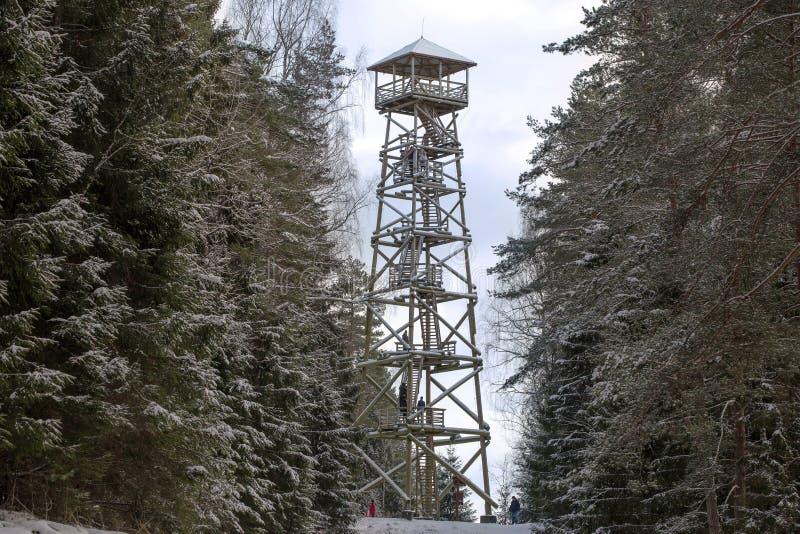 游人的木手表塔能观察周围的风景在森林里 库存照片