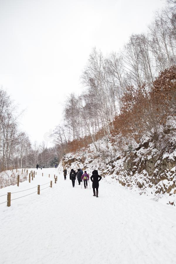 游人远足一串多雪的足迹的一个小组 库存图片