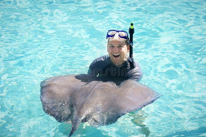 游泳与黄貂鱼 库存图片