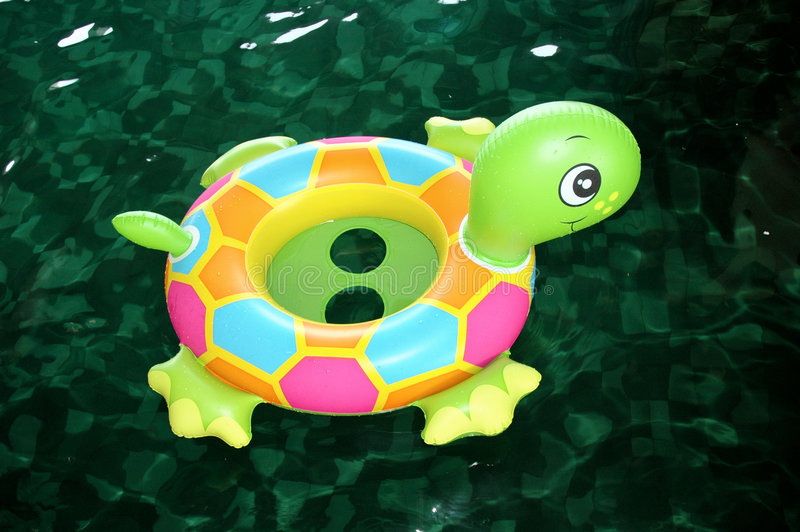 游泳乌龟 免版税库存照片