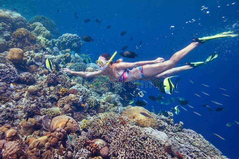 游泳在水面下使用与五颜六色的鱼的妇女临近珊瑚 免版税库存照片