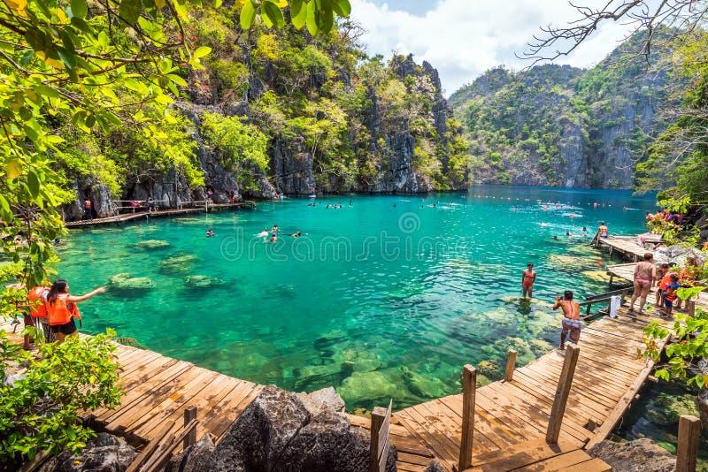游泳在Kayangan湖的人游人在Coron海岛,巴拉望岛,菲律宾 图库摄影