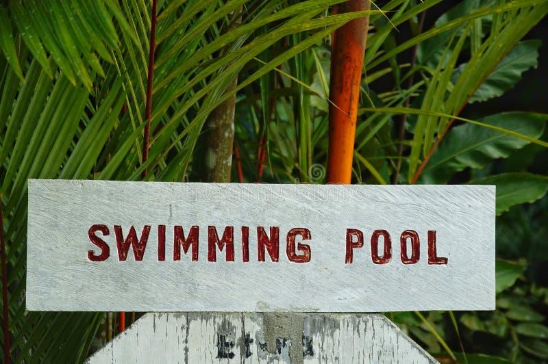 游泳场标志 库存图片