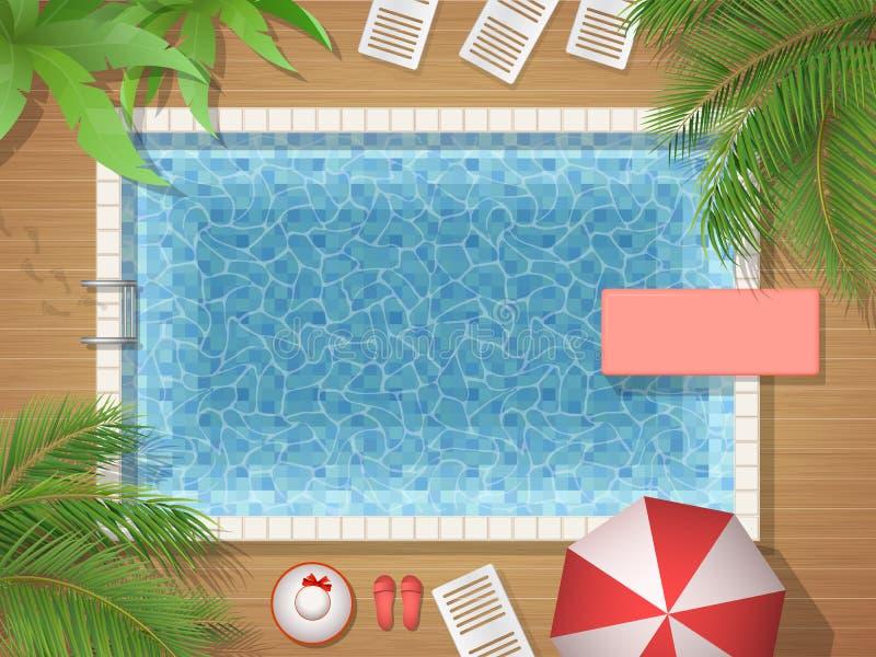 游泳池和棕榈顶视图 向量例证