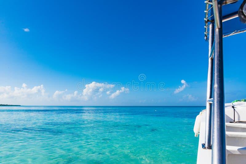 游泳的防御者由海 免版税库存图片