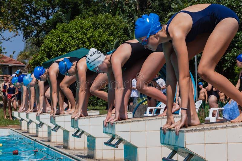 游泳种族女孩起始时间 免版税库存照片