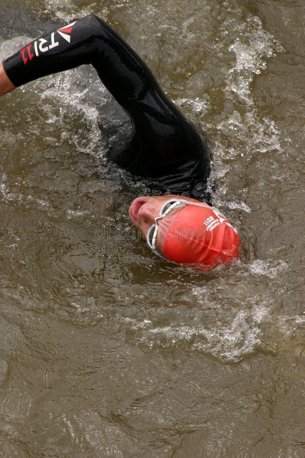 游泳者三项全能 库存图片