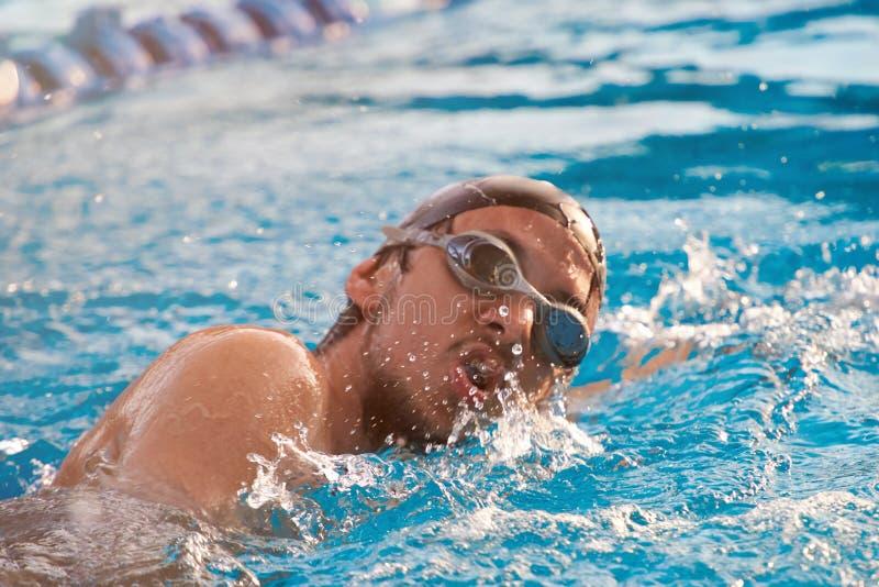 游泳者人特写镜头  免版税库存照片