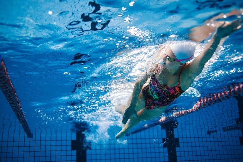 游泳者训练水下的射击在水池的 免版税图库摄影