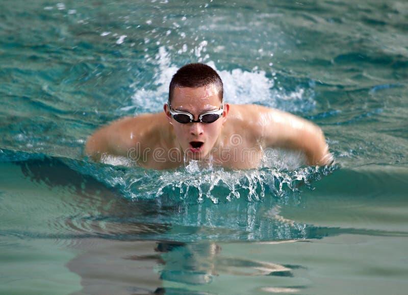 游泳者 免版税库存照片