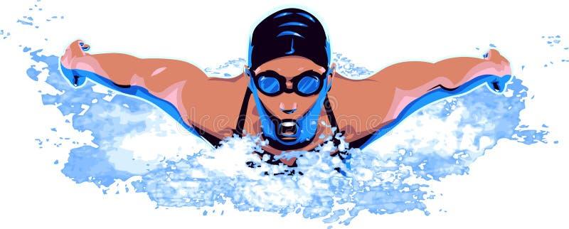 游泳者 向量例证