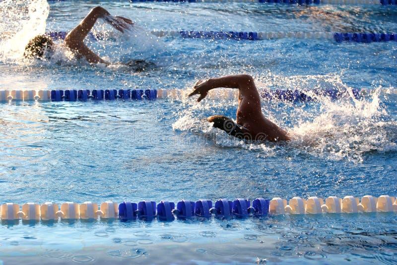 游泳 免版税库存图片