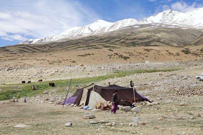 游牧人帐篷在拉达克,印度 图库摄影