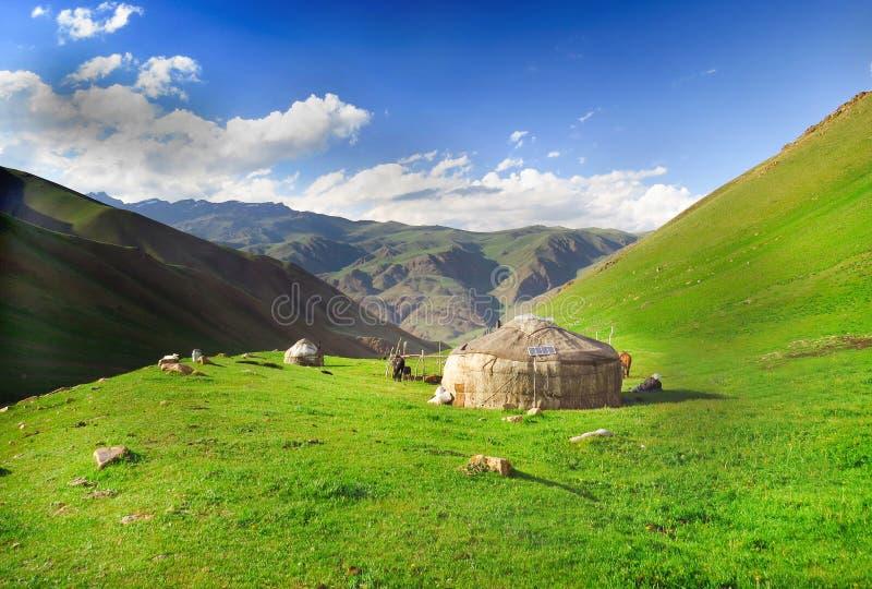 游牧生活在吉尔吉斯斯坦 库存照片