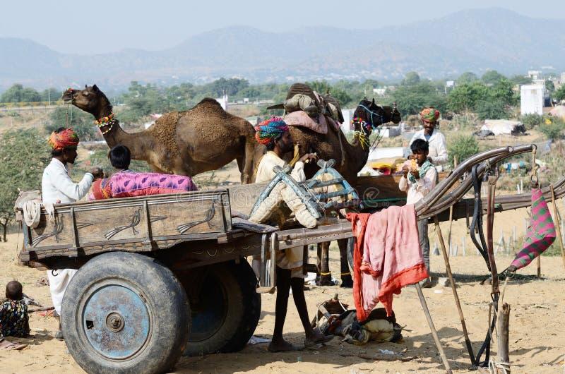 游牧阵营的部族吉普赛人在普斯赫卡尔,印度 库存照片