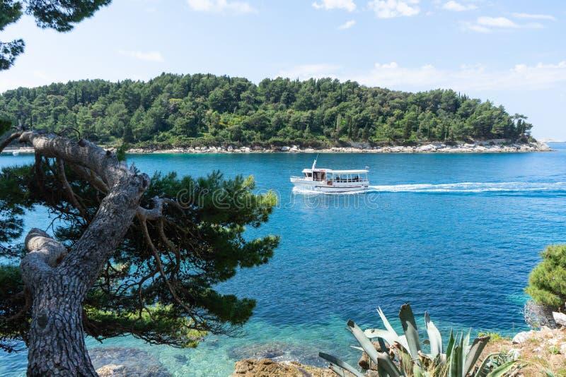 游艇在海湾输入在蓝色绿松石亚得里亚海 与绿色森林的海岸在有小船游览的克罗地亚 免版税库存照片
