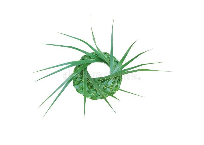 游行帽子由新鲜的绿色棕榈叶,在与裁减路线的白色背景隔绝的被编织的纹理工艺做了 免版税库存图片