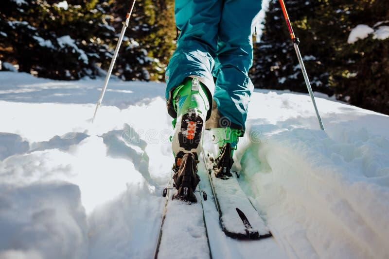 游览在冬天的滑雪在奥地利 免版税图库摄影
