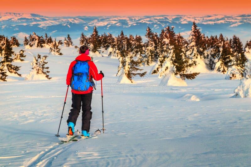 游览在山在日落,特兰西瓦尼亚,罗马尼亚,欧洲的滑雪 库存图片