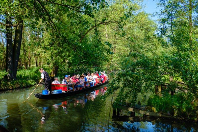 游览小船, Spreewald,德国 库存图片