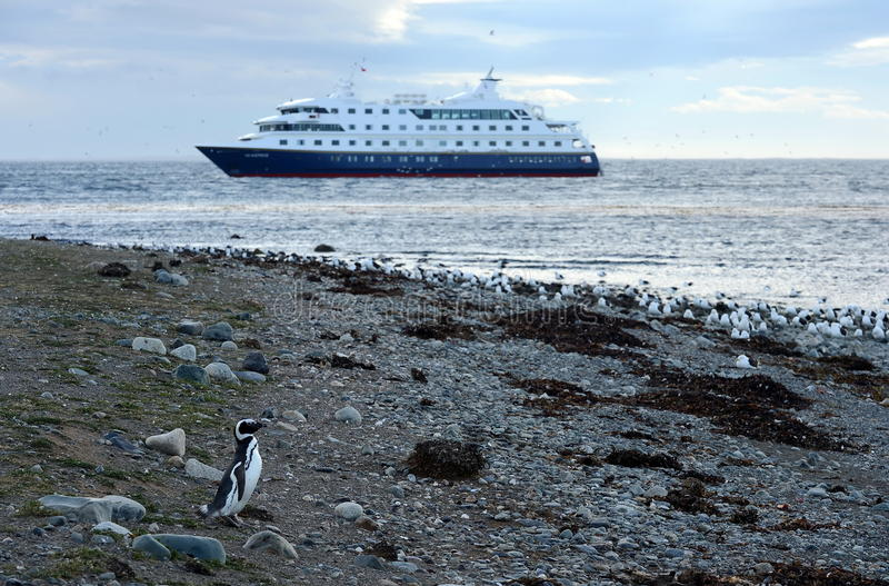 游轮通过极光在马格达莱纳智利海岛  免版税库存图片