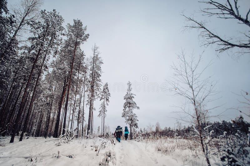 游遍多雪的森林的一个小小组游人在冬天多云天 免版税库存图片