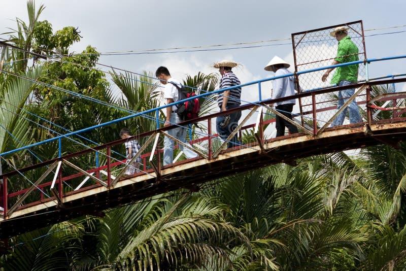 湄公河三角洲越南 免版税库存照片