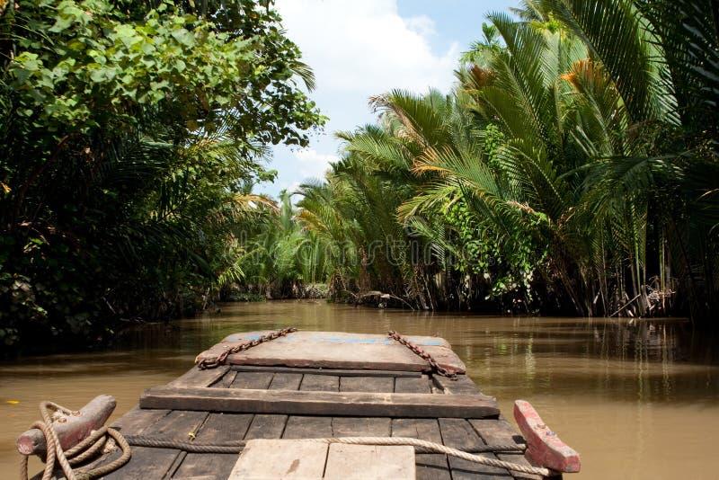 湄公河三角洲越南 库存图片