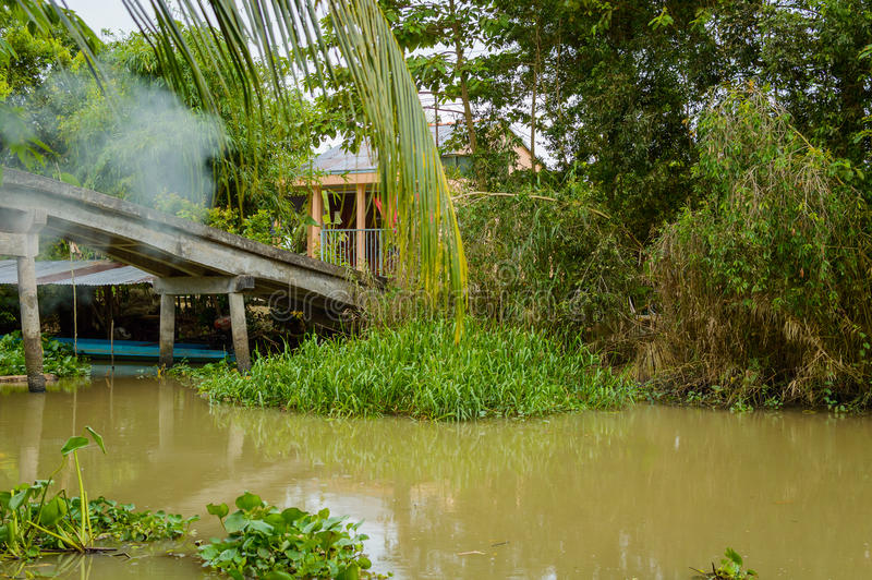 湄公河三角洲越南 免版税库存图片