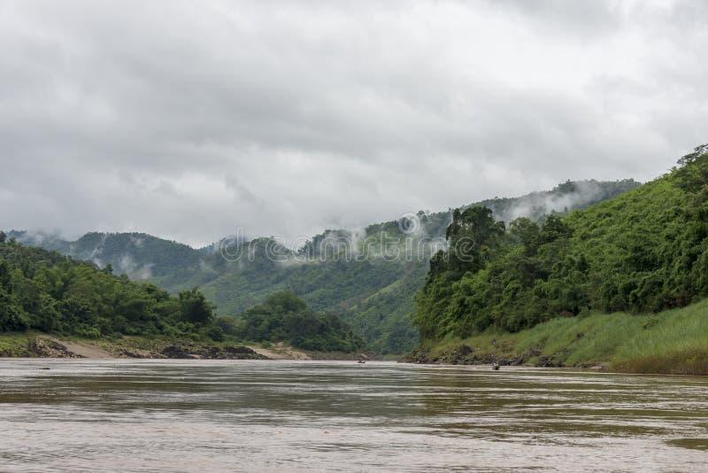 湄公河的老挝密林 库存图片