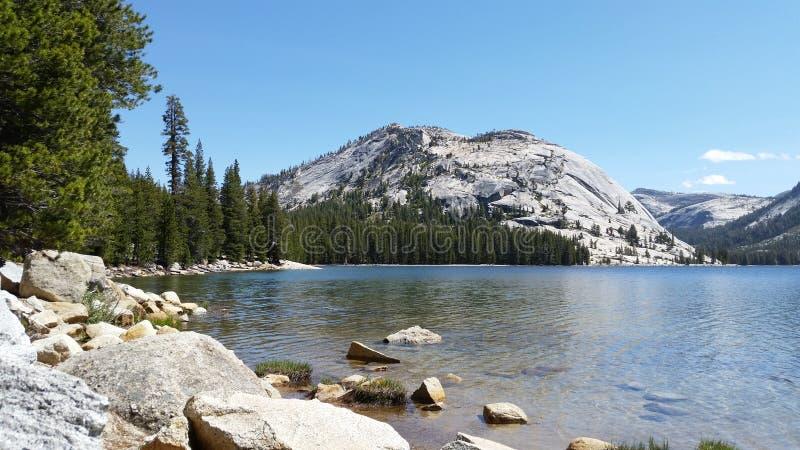 湖、杉木和雪在优胜美地 免版税图库摄影