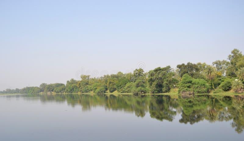 湖、树、天空和镜子作用 免版税图库摄影