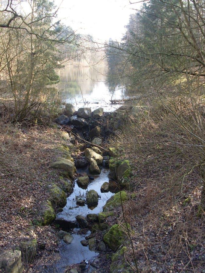 湖到小瀑布里在森林 免版税库存照片