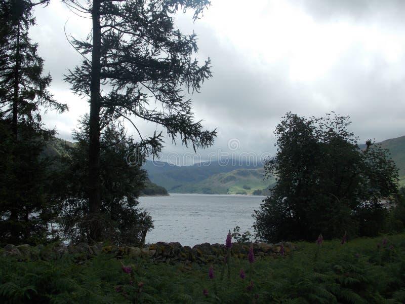 湖区 库存图片