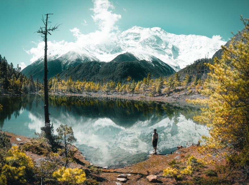 湖反射的山在喜马拉雅山 库存图片