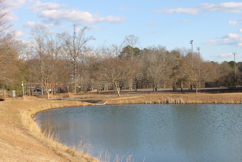 湖和一美好的天在公园 免版税库存图片