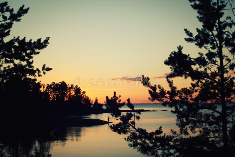 湖和杉树 银行的幽静渔夫 库存图片