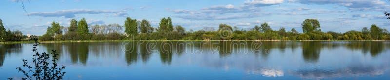 湖和树在夏天 库存图片