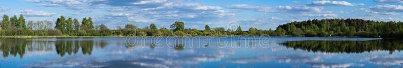 湖和树在夏天 免版税库存图片