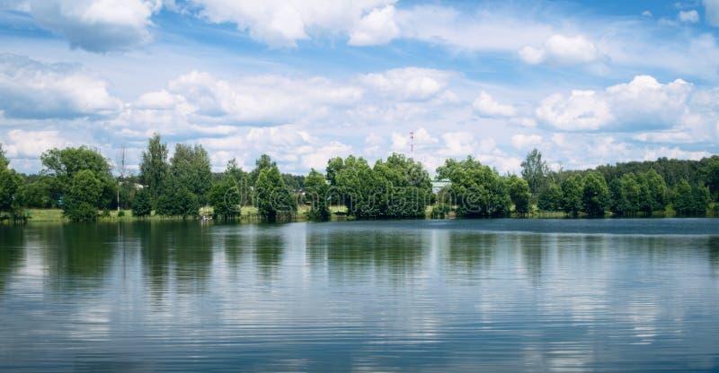 湖和树在夏天 库存照片