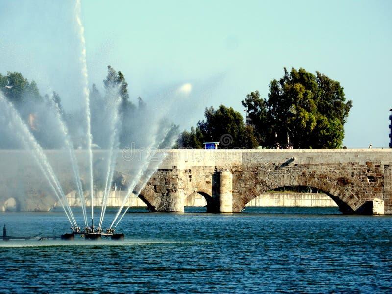 湖和桥梁 免版税库存照片
