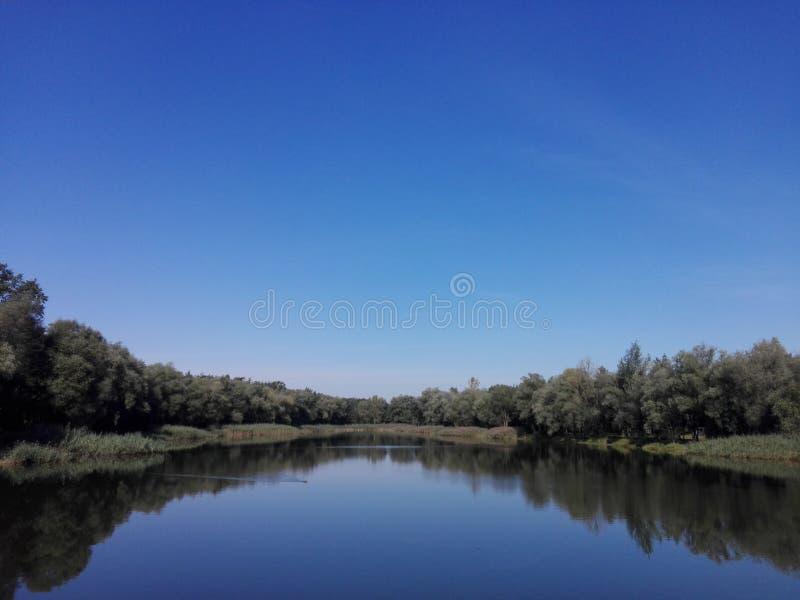 湖和森林横向 免版税库存照片